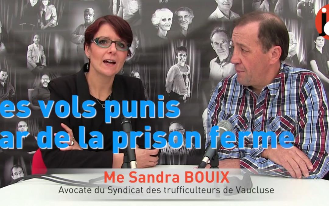 Sandra Bouix et l'actualité trufficole vauclusienne en novembre 2017